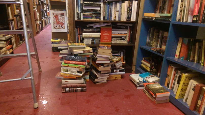 "View from the ""Jong Section"" of Ravenswood Used Books."